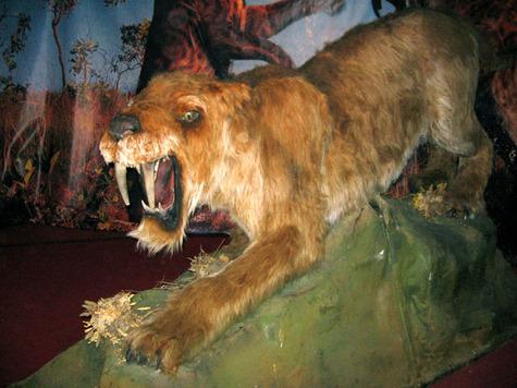 В Праге поселятся доисторические монстры.