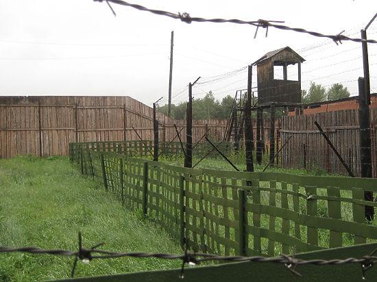 Председатель «Мемориала» Арсений Рогинский объяснил, почему возрождается сталинизм