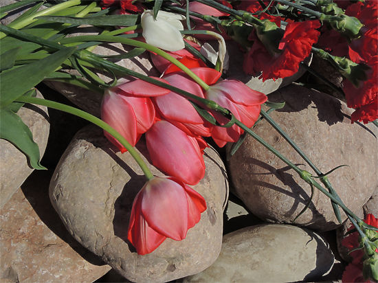 Союз журналистов Москвы объявил сбор средств на памятник погибшим коллегам