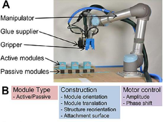 Робот создал робота