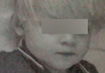 Внука главы Дмитровского района похитили из частного дома