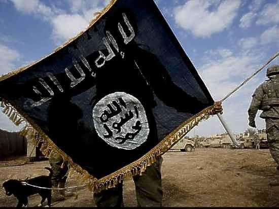 МИД РФ: к росту терроризма привели