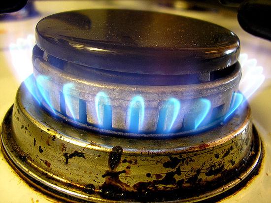 Общественники предложили сделать установку газовых датчиков в квартирах обязательной