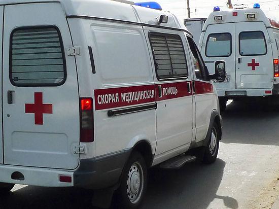 Рабочего убило веткой на юге Москвы