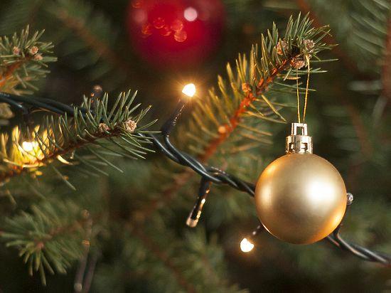 Россияне готовы потратить на новогодние подарки 230 долларов