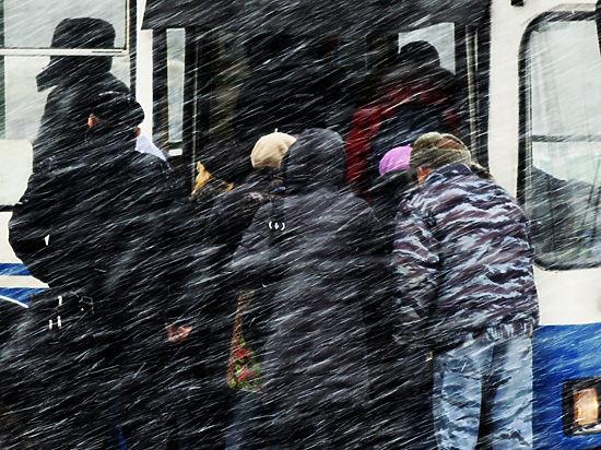 Синоптики: Москву ждёт снежная буря и похолодание