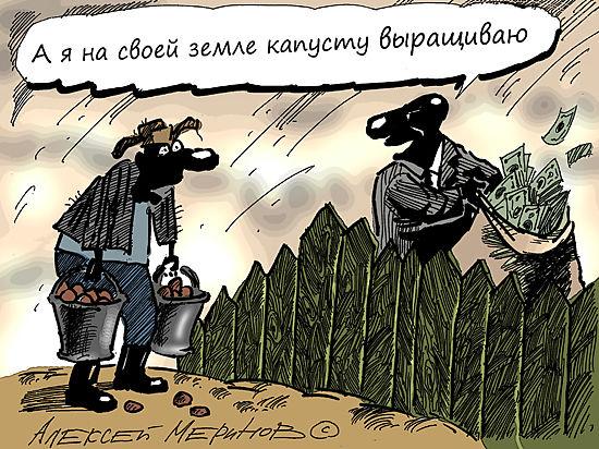 Помойки вместо пшеницы: чиновники сгоняют фермеров с освоенной земли