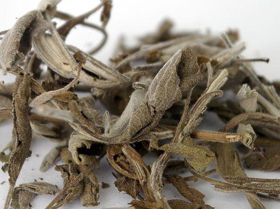 Древнейший в мире чай найден в Китае