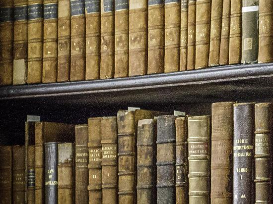 Автор закона о нежелательных организациях осудил сожжение книг в Коми
