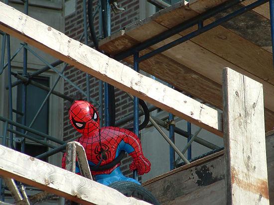 Зоологи осуществили безумное исследование эволюции Человека-паука