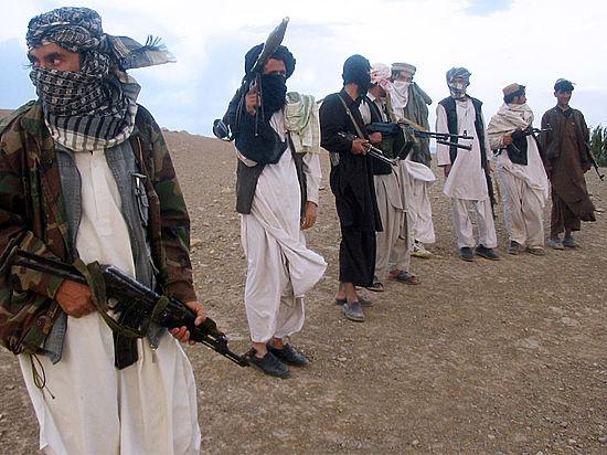 Талибы взяли ответственность за взрыв у посольства РФ в Кабуле