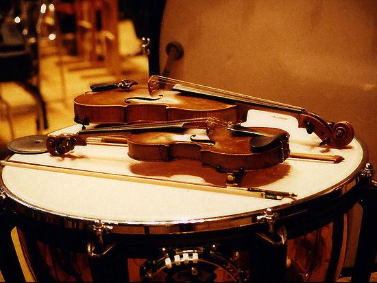 Общественники предложили присвоить музыкальным инструментам статус ручной клади