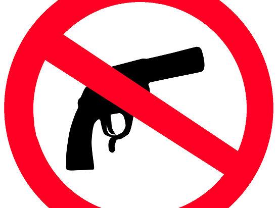 МВД отреагировало на убийства в Москве: уточнены правила хранения оружия
