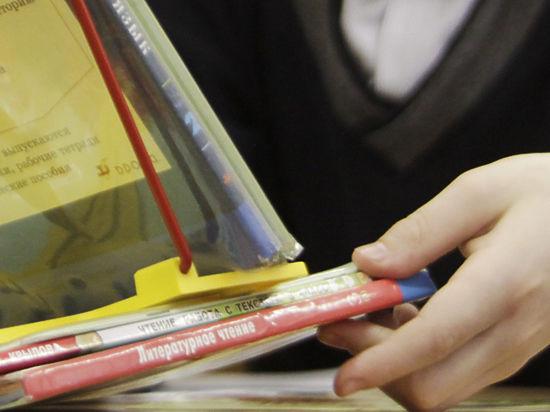 В хабаровской гимназии прокомментировали скандальное видео с читающей рэп ученицей