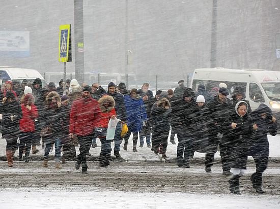 Нейрофизиологи выяснили, что каждую зиму все люди глупеют