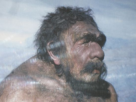 Генетики: неандертальцы начали скрещиваться с людьми 100 тысяч лет назад