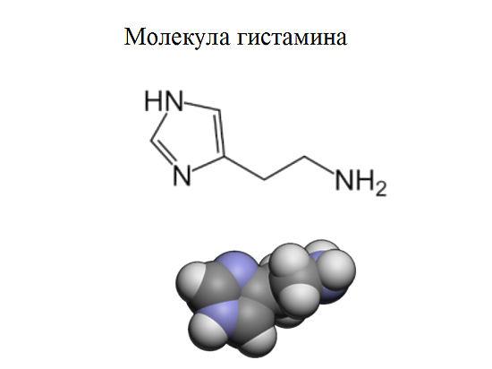 Химики из МГУ написали