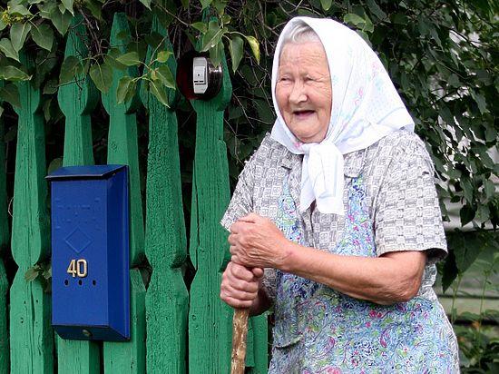 ОНФ после поручения Путина озаботился дровами для пенсионеров