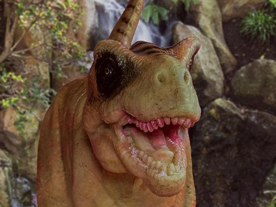 Уникальный динозавр нового вида обнаружен палеонтологами в Японии