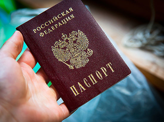 Премьер Медведев вдвое урезал срок выдачи российского паспорта