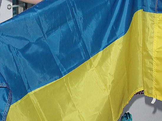 Украинского журналиста обвинили в аморальности за ввоз книг о Второй мировой