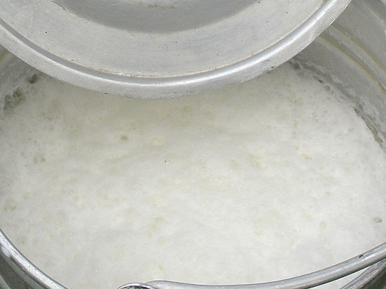 Власти и бизнес обменялись обвинениями из-за возможного дефицита молока