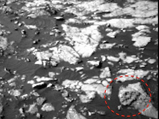 Уфологи нашли на Марсе череп тираннозавра
