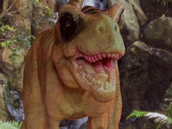 Палеонтологи обнаружили предка тираннозавров и назвали его Тимуром