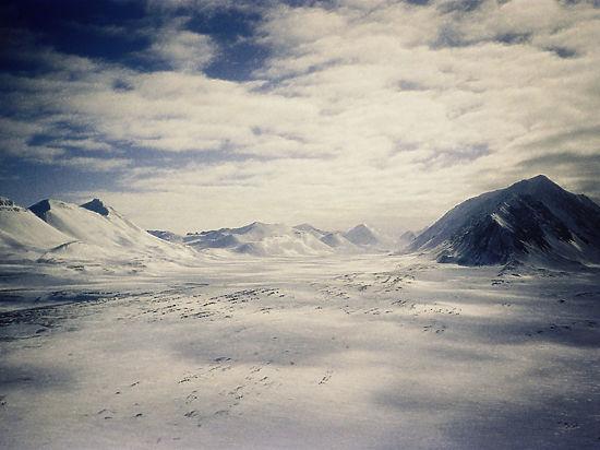 Площадь ледового покрова Арктики рекордно сократилась