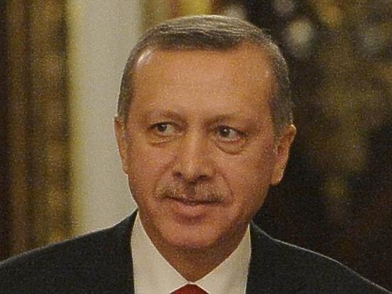 Посла ФРГ вызвали «на ковер» из-за издевательского ролика об Эрдогане