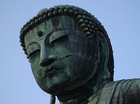 Калмыки поставили на колени дагестанского борца за осквернение Будды