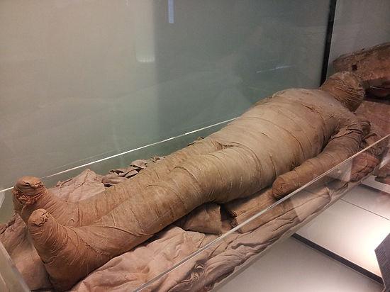 Ученые создали трехмерную модель пятитысячелетней мумии