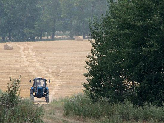 В Иркутске возродят колхозы, чтобы выжить в