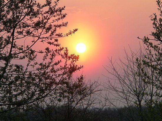 На Северном полушарии наступил день летнего солнцестояния