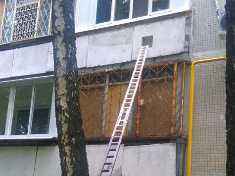 В юге Москвы появился дом с отдльным входом для домашних питомцев