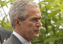 Вся Америка в страшном смятении: что случилось с 43-м президентом Соединенных Штатов Джорджем Бушем-младшим, устроившим веселые танцы на мемориальной службе, посвященной памяти расстрелянных в Далласе пяти полицейских? Психолог