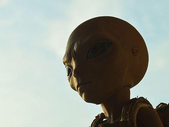 Уфологи рассказали, что в Дании найден череп пришельца