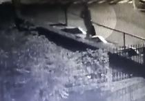 Украинский портал «Обозреватель» опубликовал видео с нескольких камер наблюдения, на котором видны подготовка к убийству журналиста Павла Шеремета и сама закладка взрывного устройства под его машину