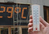 Прогноз на начало августа: в Москве обещают рекордные плюс 30