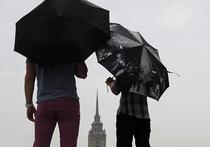 Прокат зонтов в Москве: начать предлагают с парков