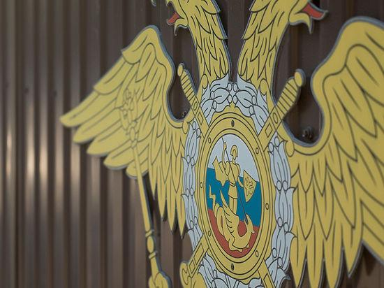 В РФ появятся инспектора по изнасилованиям