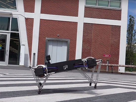 Инженеры создали милого робота, способного прыгать, лазать и открывать двери