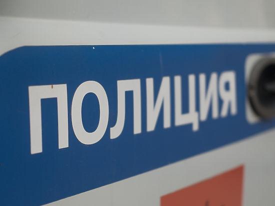 СК в столице России проверит полицейских, которые могли «крышевать» торговцев вэлектричках