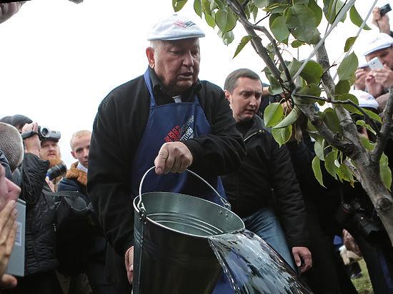 Восстановить фруктовый парк в«Коломенском» приняли решение 6 тыс. человек