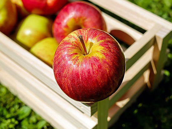 Беларусь ввезла в РФ в5 раз больше яблок, чем вырастила