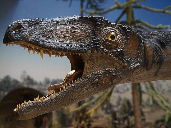 Ученый  из США  установилthat  какие  поразительные  звуки  издавали  динозавры
