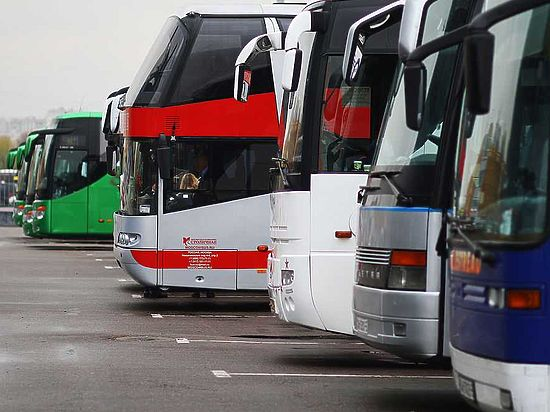 Образцовых пассажирских перевозчиков хотят освободить от проверок