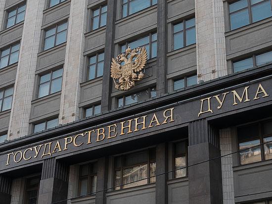 Единороссы вводят в Госдуме «фильтр от идиотов»