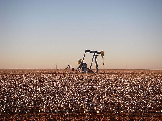 Цену барреля откорректирует сланцевая нефть