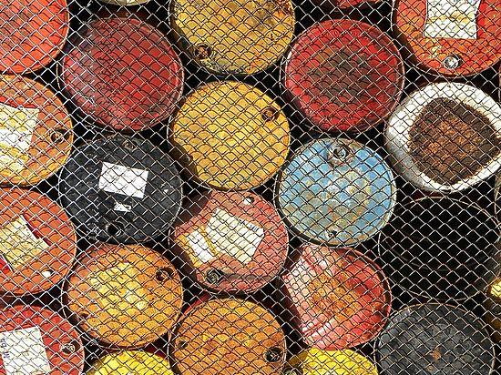 Химики создали из экскрементов заменитель нефти